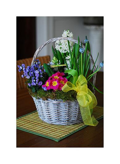 Flowerbasket1
